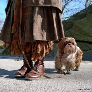 Loyal dog with well dressed woman.