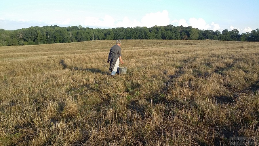 Leslie working on her North Carolina farm wearing her Ivey Abitz Phinneus Coat Dress in Wolfie Grey Crinkled Voile.