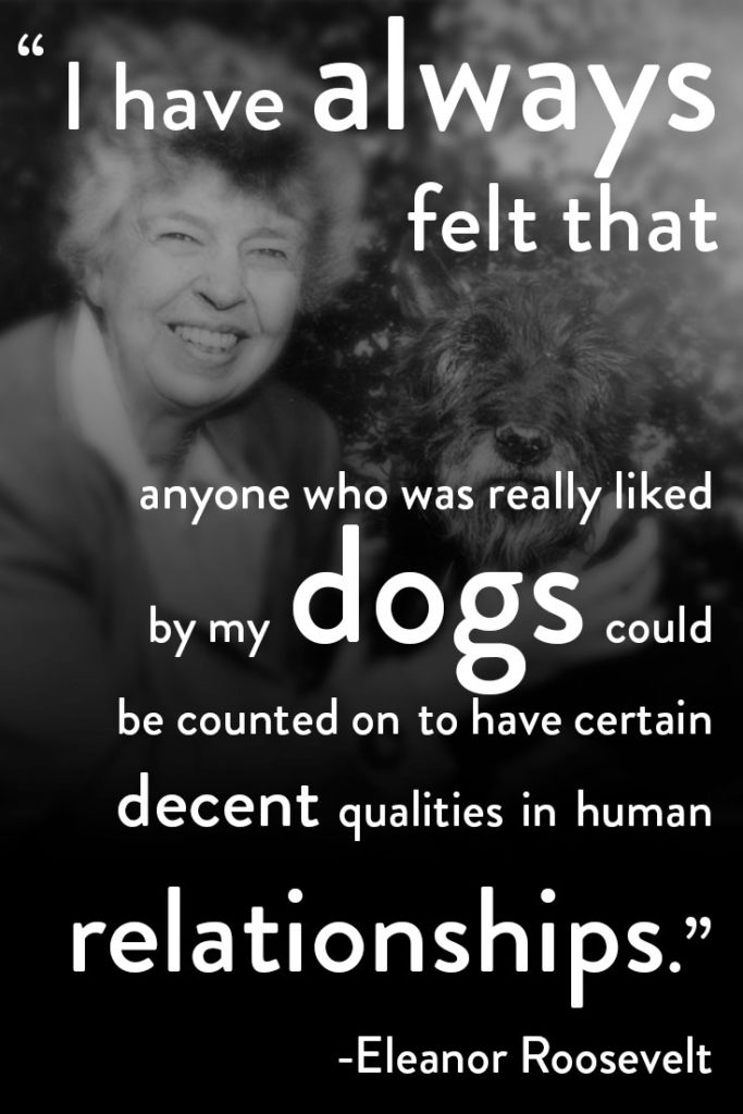 Eleanor's Litmus Test - a quote from Eleanor Roosevelt about dogs and human relationships.